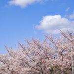 香川県でおすすめの就活写真が撮影できる写真スタジオ10選11