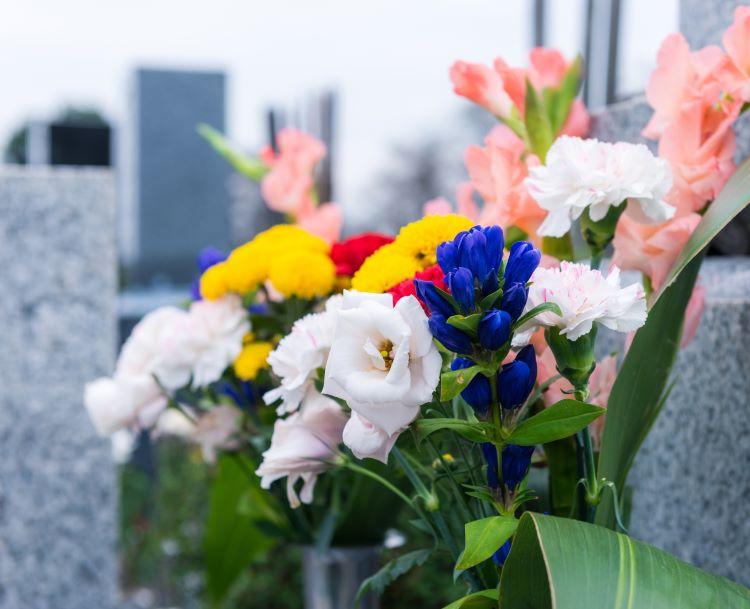 栃木県でおすすめの生前遺影写真の撮影ができる写真館10選