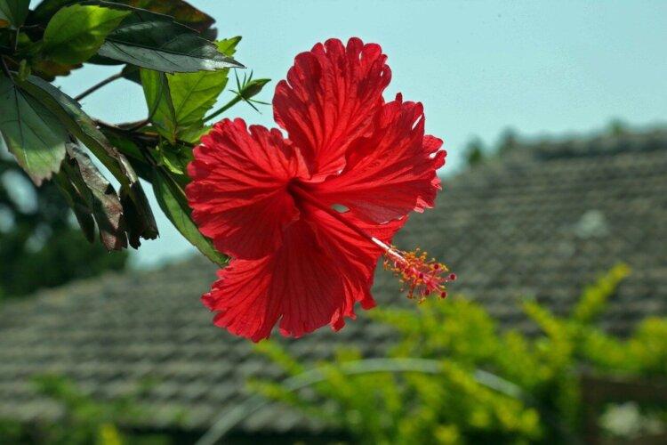沖縄県にある宣材写真の撮影におすすめな写真スタジオ5選
