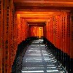 京都府でおすすめの生前遺影写真の撮影ができる写真館10選