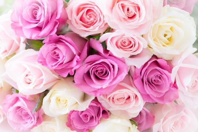 フォトウェディングのブーケは決まった?種類・色・お花・衣装から選ぶ16