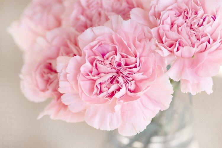 遺影写真を飾る花のおすすめは?種類から色まで紹介9