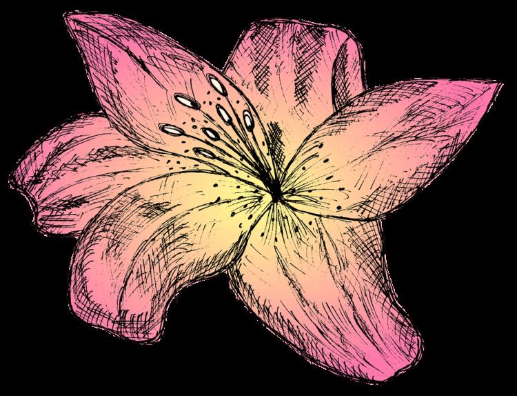 成人式写真の振袖はどう選ぶ?人気の色・花柄・古典柄・個性的デザイン別の選び方4