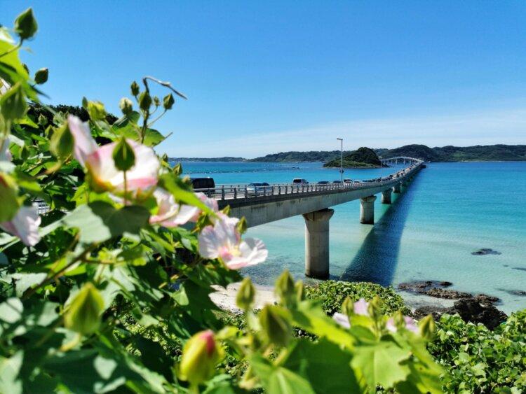 沖縄県でフォトウェディング・前撮りにおすすめの写真スタジオ10選